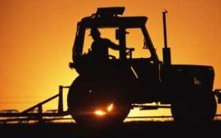 Фото тракторов мтз всех моделей