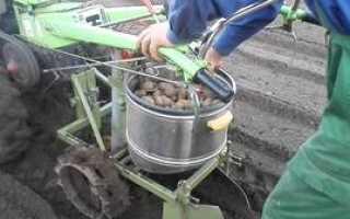 Как сделать транспортерную картофелекопалку дома своими руками
