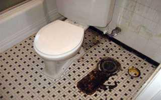 Причина запаха в туалете
