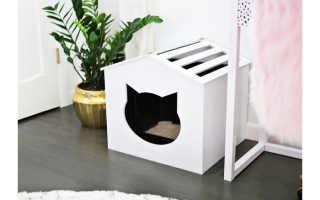 Как сделать туалет котенку
