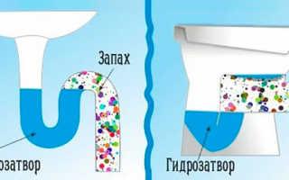 В туалете пахнет канализацией причины