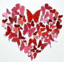 Сердце из бабочек на стену